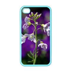 Cuckoo Flower Apple iPhone 4 Case (Color)