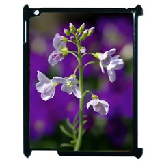 Cuckoo Flower Apple Ipad 2 Case (black)
