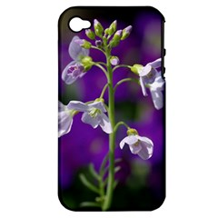 Cuckoo Flower Apple iPhone 4/4S Hardshell Case (PC+Silicone)