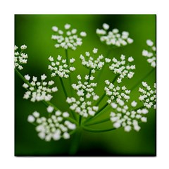 Queen Anne s Lace Ceramic Tile