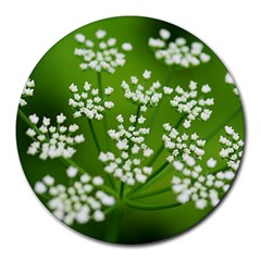 Queen Anne s Lace 8  Mouse Pad (Round)