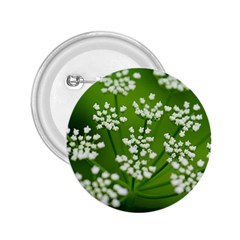 Queen Anne s Lace 2.25  Button