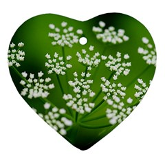 Queen Anne s Lace Heart Ornament