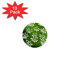 Queen Anne s Lace 1  Mini Button Magnet (10 pack)