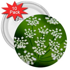 Queen Anne s Lace 3  Button (10 pack)