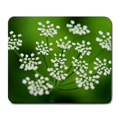 Queen Anne s Lace Large Mouse Pad (Rectangle)
