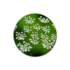 Queen Anne s Lace Drink Coaster (Round)