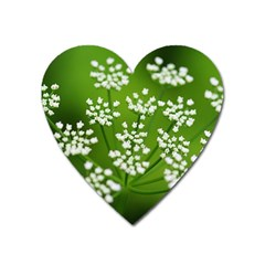 Queen Anne s Lace Magnet (Heart)