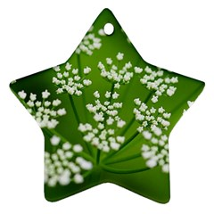 Queen Anne s Lace Star Ornament (Two Sides)