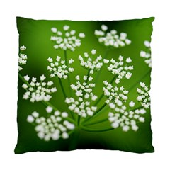 Queen Anne s Lace Cushion Case (Two Sided)