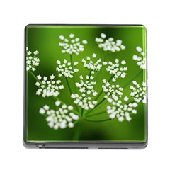 Queen Anne s Lace Memory Card Reader with Storage (Square)