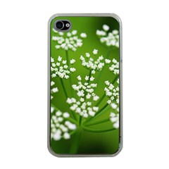 Queen Anne s Lace Apple iPhone 4 Case (Clear)