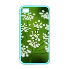Queen Anne s Lace Apple iPhone 4 Case (Color)