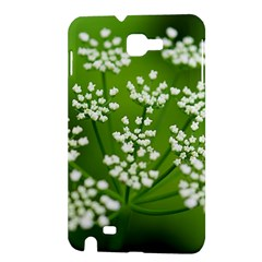 Queen Anne s Lace Samsung Galaxy Note 1 Hardshell Case