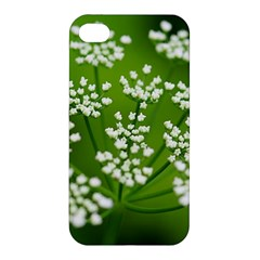 Queen Anne s Lace Apple iPhone 4/4S Premium Hardshell Case