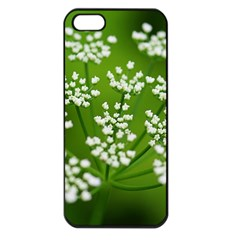 Queen Anne s Lace Apple iPhone 5 Seamless Case (Black)
