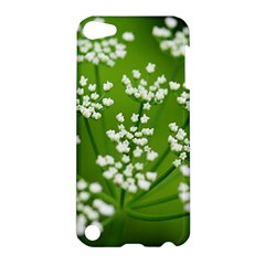 Queen Anne s Lace Apple iPod Touch 5 Hardshell Case