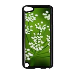 Queen Anne s Lace Apple Ipod Touch 5 Case (black)