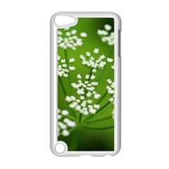 Queen Anne s Lace Apple iPod Touch 5 Case (White)