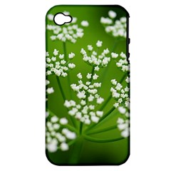 Queen Anne s Lace Apple iPhone 4/4S Hardshell Case (PC+Silicone)