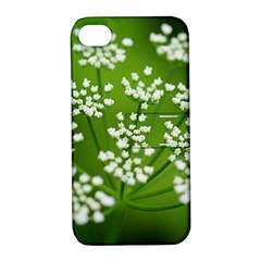Queen Anne s Lace Apple iPhone 4/4S Hardshell Case with Stand