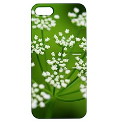 Queen Anne s Lace Apple iPhone 5 Hardshell Case with Stand