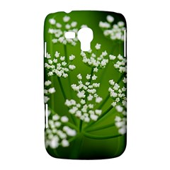 Queen Anne s Lace Samsung Galaxy Duos I8262 Hardshell Case