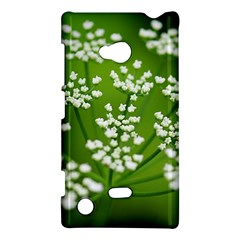 Queen Anne s Lace Nokia Lumia 720 Hardshell Case