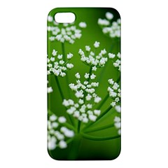Queen Anne s Lace iPhone 5S Premium Hardshell Case