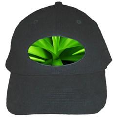 Yucca Palm  Black Baseball Cap