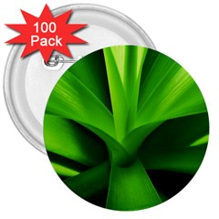 Yucca Palm  3  Button (100 pack)