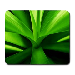 Yucca Palm  Large Mouse Pad (Rectangle)