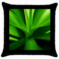 Yucca Palm  Black Throw Pillow Case