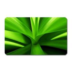 Yucca Palm  Magnet (Rectangular)