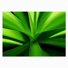 Yucca Palm  Glasses Cloth (large, Two Sided)