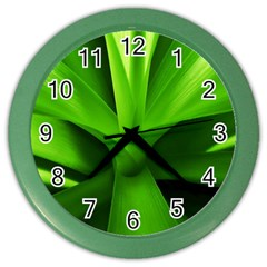 Yucca Palm  Wall Clock (Color)
