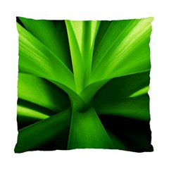 Yucca Palm  Cushion Case (Two Sided)