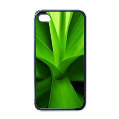 Yucca Palm  Apple iPhone 4 Case (Black)