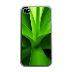Yucca Palm  Apple Iphone 4 Case (clear)