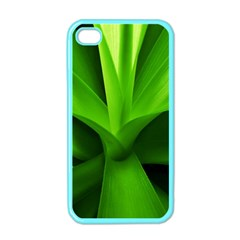 Yucca Palm  Apple iPhone 4 Case (Color)