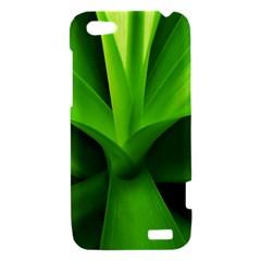 Yucca Palm  HTC One V Hardshell Case
