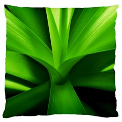 Yucca Palm  Large Cushion Case (Two Sided)