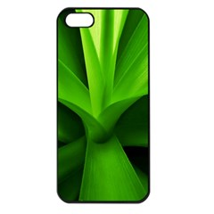 Yucca Palm  Apple iPhone 5 Seamless Case (Black)