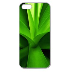 Yucca Palm  Apple Seamless Iphone 5 Case (clear)
