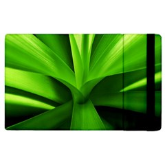Yucca Palm  Apple Ipad 3/4 Flip Case