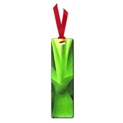 Yucca Palm  Small Bookmark