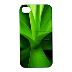 Yucca Palm  Apple iPhone 4/4S Hardshell Case with Stand