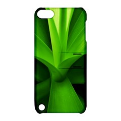 Yucca Palm  Apple iPod Touch 5 Hardshell Case with Stand