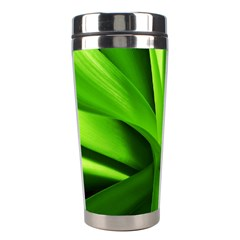 Yucca Palm  Stainless Steel Travel Tumbler