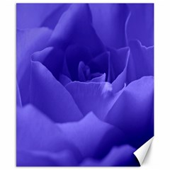 Rose Canvas 8  x 10  (Unframed)